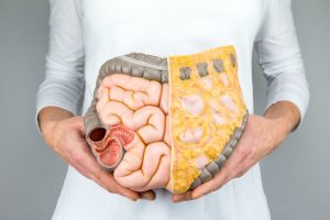 Woman holding model of human intestines in front of body on white background
